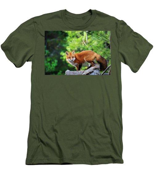A Cunning Hunter Men's T-Shirt (Slim Fit) by Gary Hall