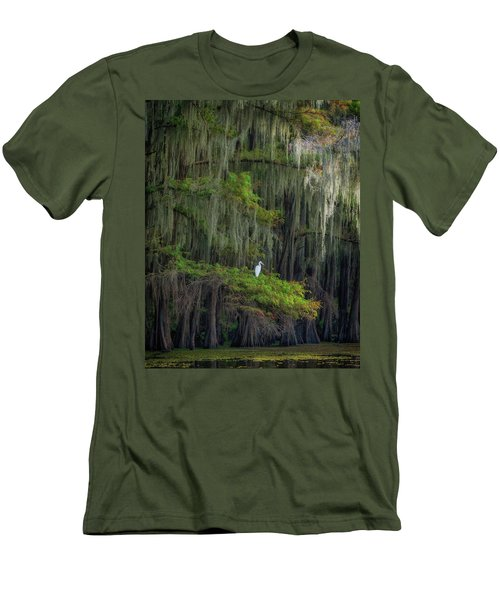 A Perch With A View Men's T-Shirt (Athletic Fit)