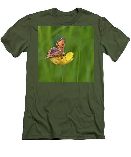 A Small Copper Butterfly (lycaena Men's T-Shirt (Slim Fit)