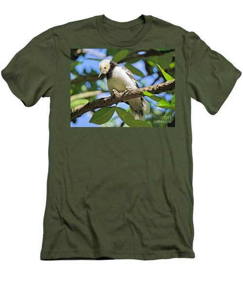A Starling To Remember Men's T-Shirt (Athletic Fit)