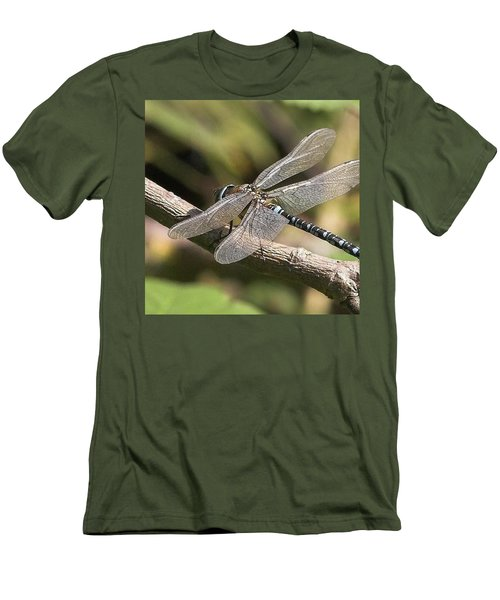 Aeshna Juncea - Common Hawker Taken At Men's T-Shirt (Athletic Fit)