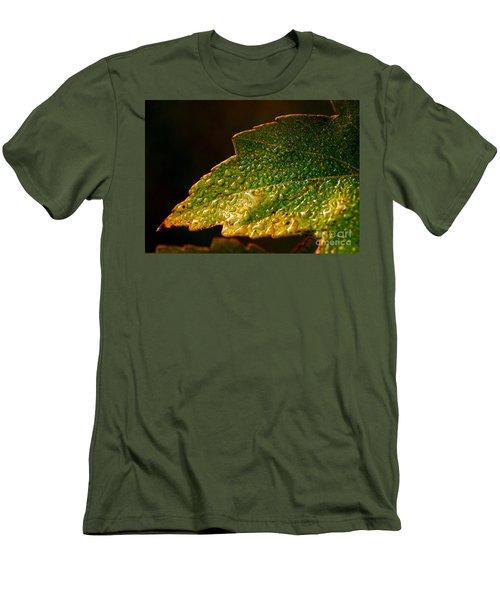After Rain Men's T-Shirt (Athletic Fit)