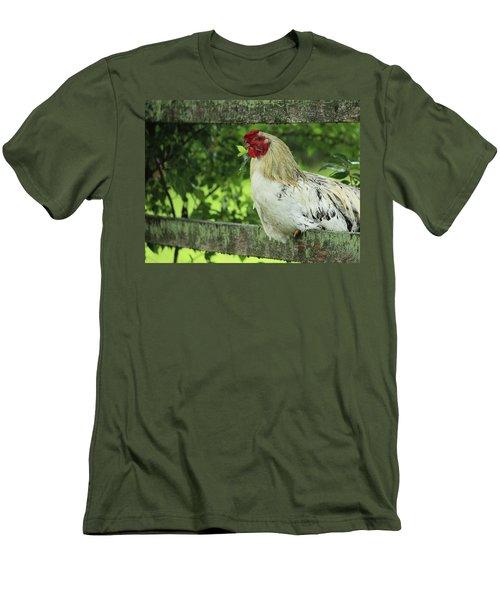 Afternoon Siesta Men's T-Shirt (Slim Fit) by Rowana Ray