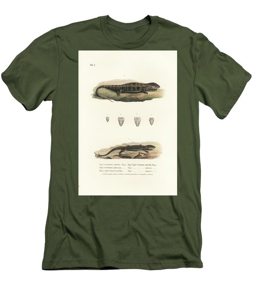 Alligator Lizards From Mexico Men's T-Shirt (Slim Fit) by Friedrich August Schmidt