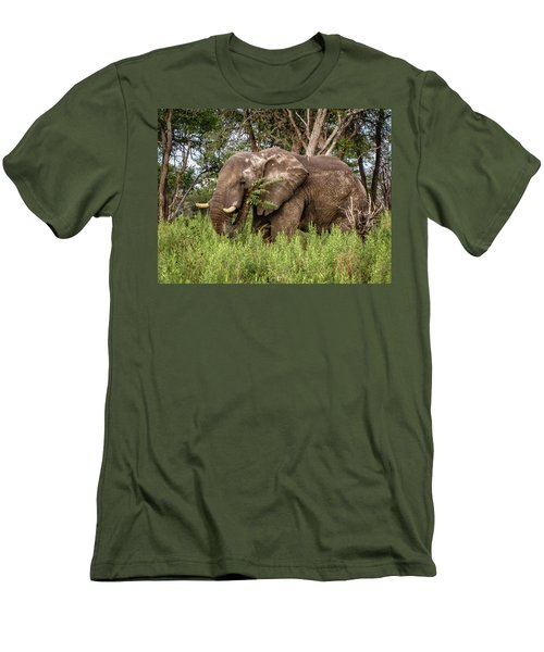 Alpha Male Elephant Men's T-Shirt (Athletic Fit)
