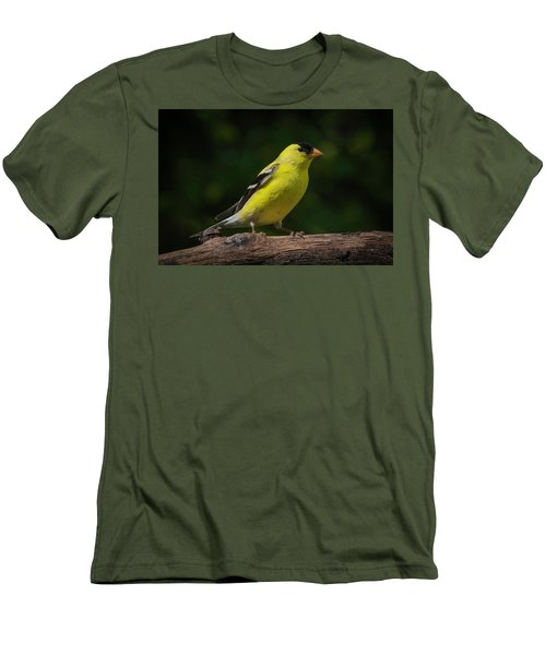 American Goldfinch Male Men's T-Shirt (Slim Fit) by Kenneth Cole