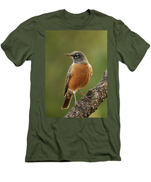 Men's T-Shirt (Slim Fit) featuring the photograph American Robin by Doug Herr