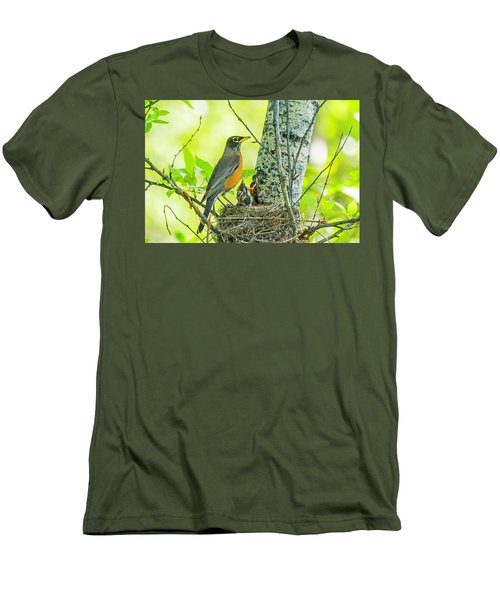 American Robin Feeding Chicks Men's T-Shirt (Athletic Fit)