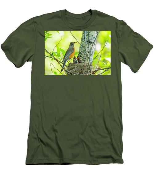 American Robin Feeding Chicks Men's T-Shirt (Athletic Fit)