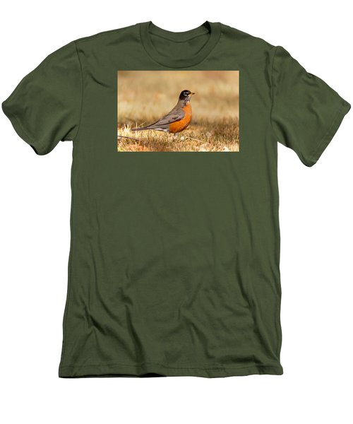 Men's T-Shirt (Athletic Fit) featuring the photograph American Robin by Ram Vasudev