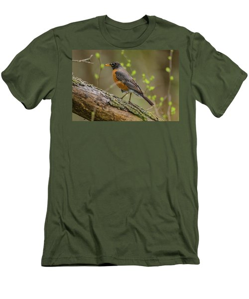 American Robin Men's T-Shirt (Slim Fit) by Ray Congrove