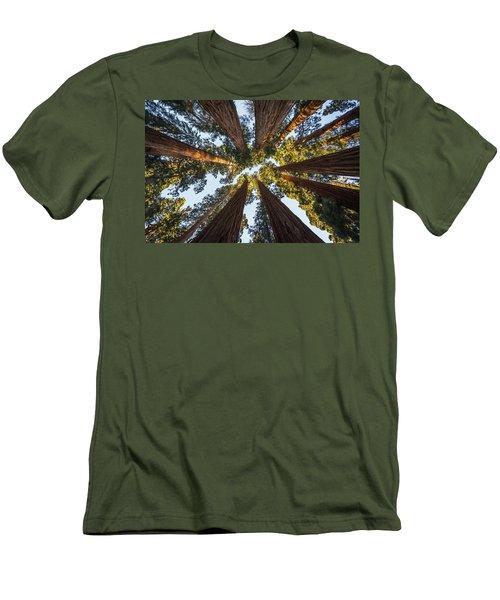 Amongst The Giant Sequoias Men's T-Shirt (Slim Fit) by Alpha Wanderlust