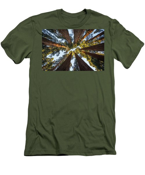Amongst The Giant Sequoias Men's T-Shirt (Athletic Fit)