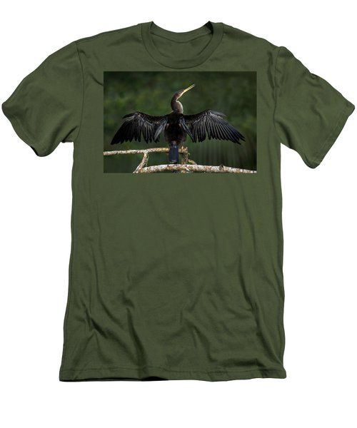 Anhinga Anhinga Anhinga Perching Men's T-Shirt (Athletic Fit)