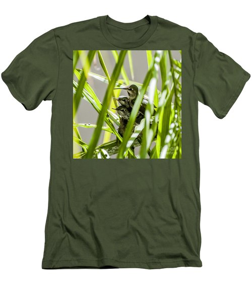 Men's T-Shirt (Slim Fit) featuring the photograph Anna Hummer On Nest by Daniel Hebard