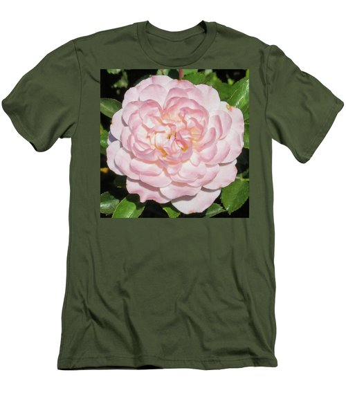Antique Pink Rose Men's T-Shirt (Slim Fit) by Mark Barclay