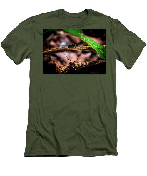 Ants Adventure Men's T-Shirt (Athletic Fit)