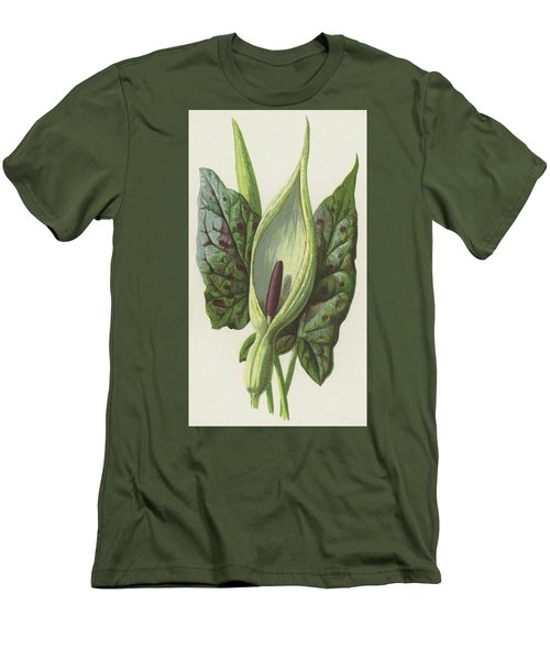 Arum, Cuckoo Pint Men's T-Shirt (Slim Fit) by Frederick Edward Hulme