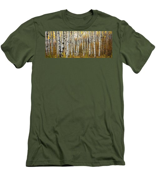 Aspen Tree Grove Men's T-Shirt (Slim Fit) by Ron Dahlquist - Printscapes