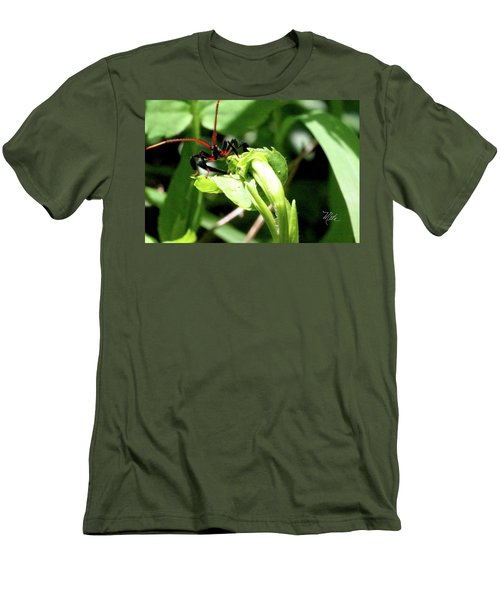 Assassin Bug Men's T-Shirt (Slim Fit) by Meta Gatschenberger