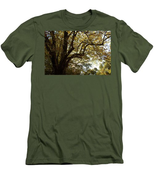 Autumn Branches Men's T-Shirt (Athletic Fit)