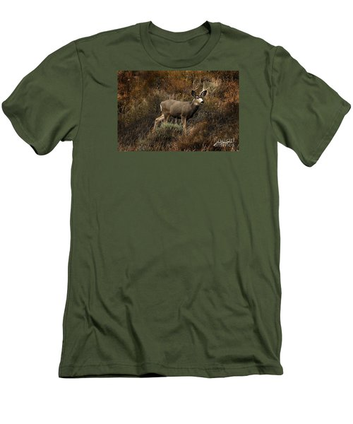 Autumn Buck Men's T-Shirt (Athletic Fit)