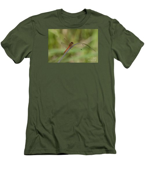 Men's T-Shirt (Slim Fit) featuring the photograph Autumn Meadowhawk by Randy Bodkins