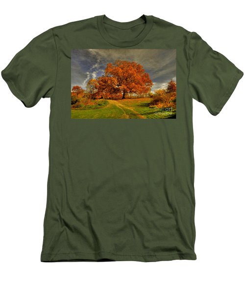 Autumn Picnic On The Hill Men's T-Shirt (Slim Fit) by Lois Bryan