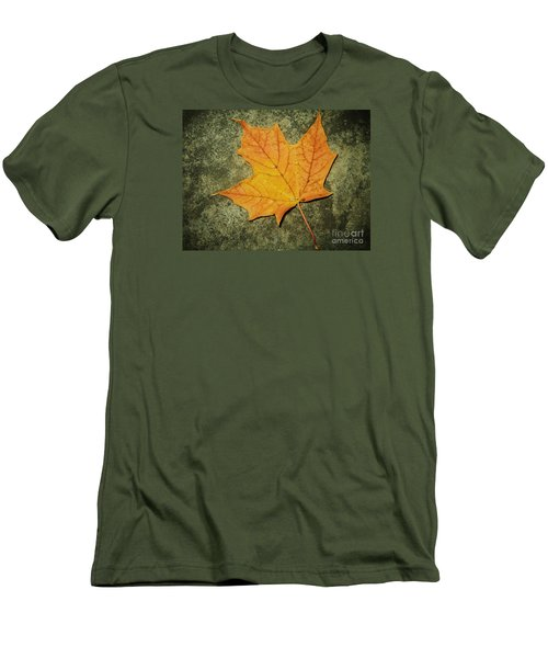 Autumn Men's T-Shirt (Slim Fit) by Reb Frost