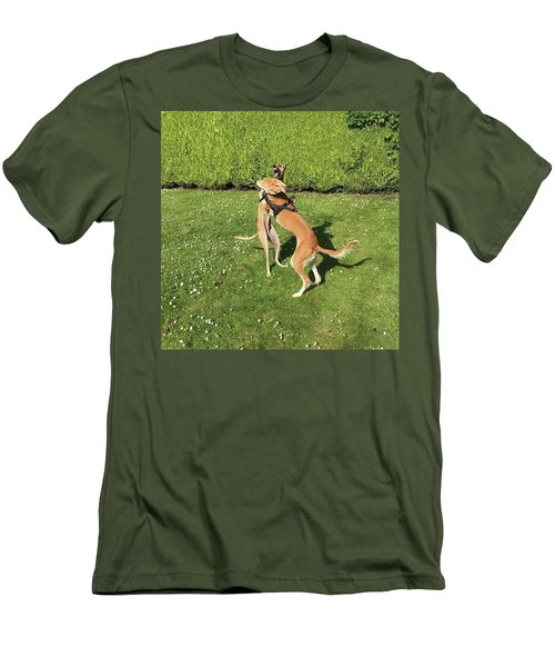 Ava The Saluki And Finly The Lurcher Men's T-Shirt (Athletic Fit)