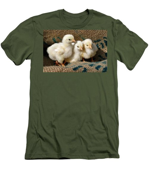 Baby Chicks Men's T-Shirt (Athletic Fit)