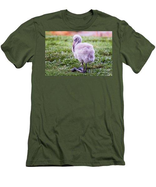 Baby Flamingo Sitting Men's T-Shirt (Slim Fit) by Stephanie Hayes