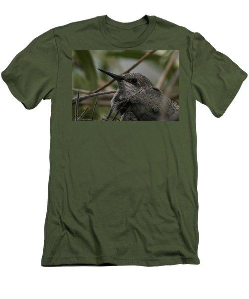 Baby Humming Bird Men's T-Shirt (Slim Fit) by Lynn Geoffroy