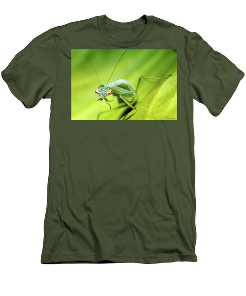Baby Praymantes 6677 Men's T-Shirt (Slim Fit) by Kevin Chippindall