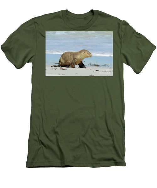 Baby Sea Lion On Seals Bay Men's T-Shirt (Athletic Fit)
