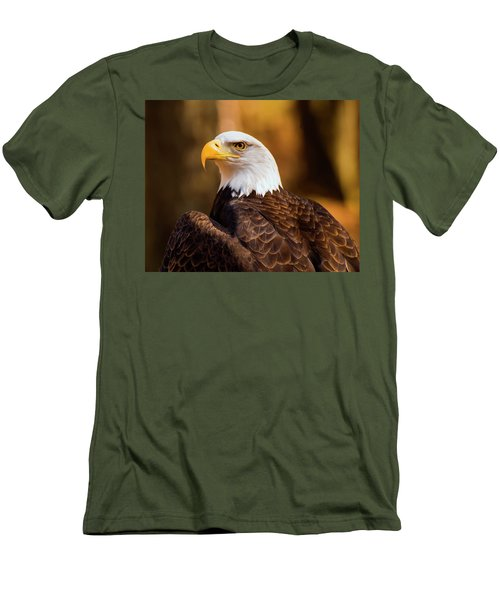 Bald Eagle 2 Men's T-Shirt (Slim Fit) by Chris Flees