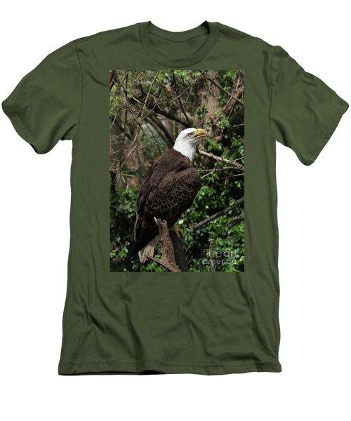 Bald Eagle #7 Men's T-Shirt (Athletic Fit)