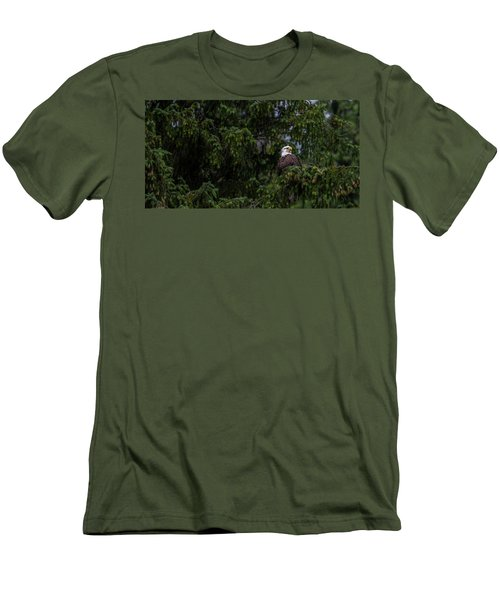 Bald Eagle In The Tree Men's T-Shirt (Slim Fit) by Timothy Latta