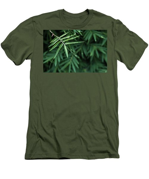Bamboo Leaves Background Men's T-Shirt (Slim Fit) by Jingjits Photography