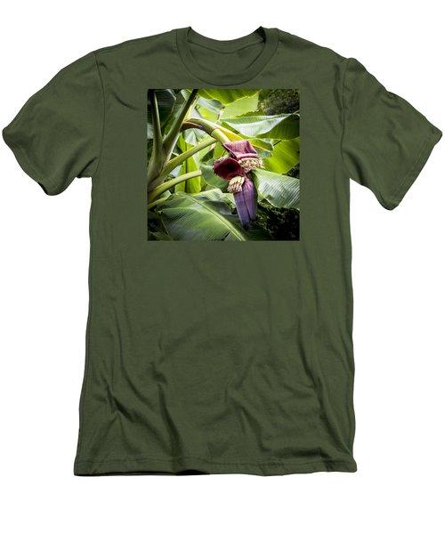 Banana Beginnings Square Men's T-Shirt (Slim Fit) by Kerri Ligatich
