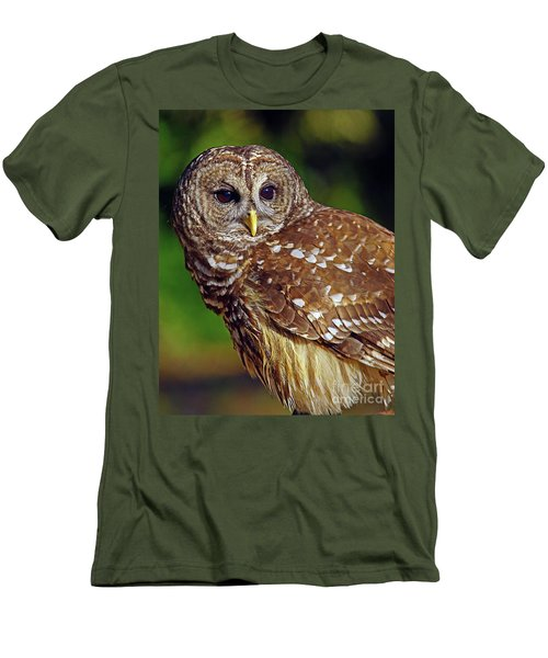 Barred Owl Men's T-Shirt (Slim Fit) by Larry Nieland