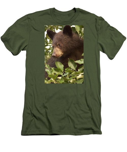 Bear Cub In Apple Tree1 Men's T-Shirt (Athletic Fit)