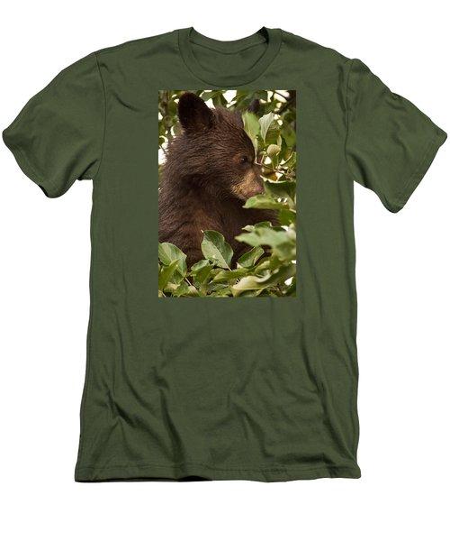 Bear Cub In Apple Tree3 Men's T-Shirt (Slim Fit) by Loni Collins