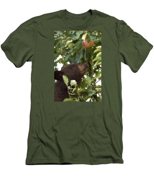 Bear Cub In Apple Tree4 Men's T-Shirt (Slim Fit) by Loni Collins