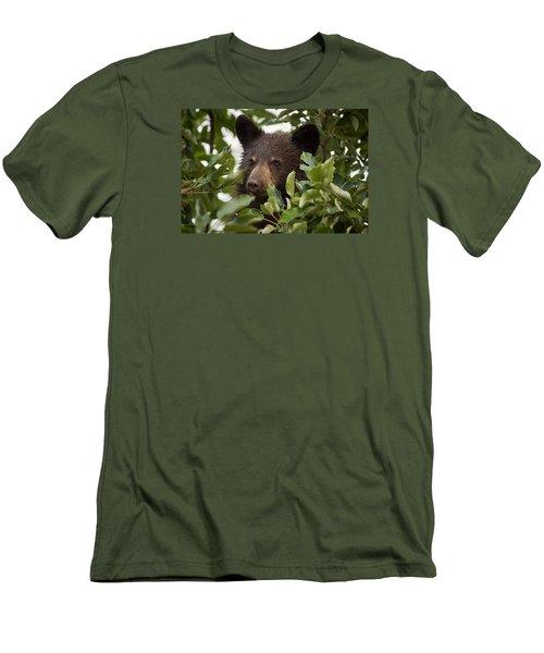 Bear Cub In Apple Tree6 Men's T-Shirt (Slim Fit) by Loni Collins