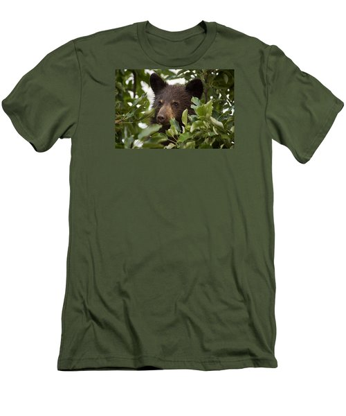 Bear Cub In Apple Tree6 Men's T-Shirt (Athletic Fit)