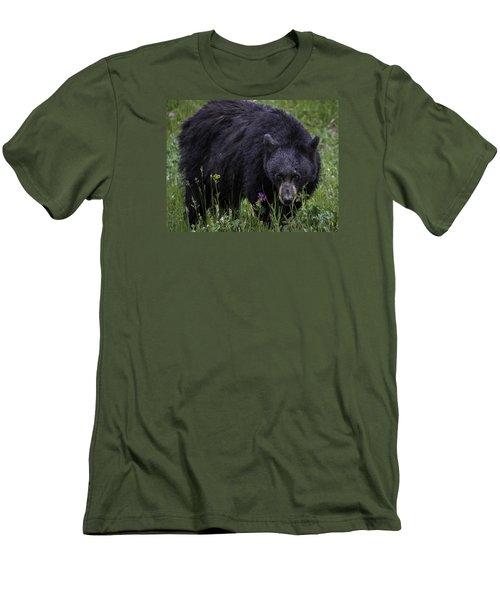 Bear Gaze Men's T-Shirt (Slim Fit) by Elizabeth Eldridge