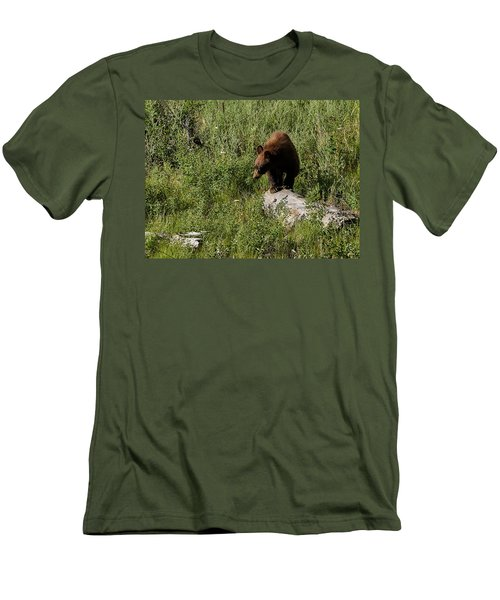 Bear1 Men's T-Shirt (Athletic Fit)