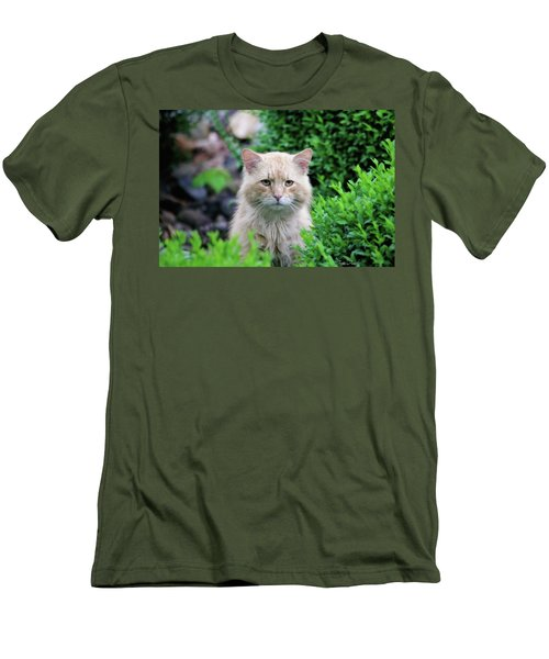 Men's T-Shirt (Athletic Fit) featuring the photograph Beautiful Kitty by Trina Ansel