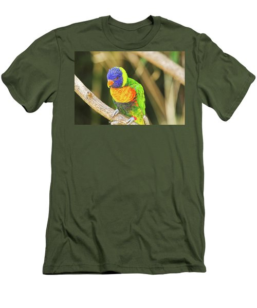 Beautiful Perched Mccaw On A Branch. Men's T-Shirt (Athletic Fit)
